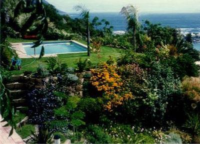 Pools-Gallery15
